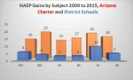 AZ NAEP gains bysector